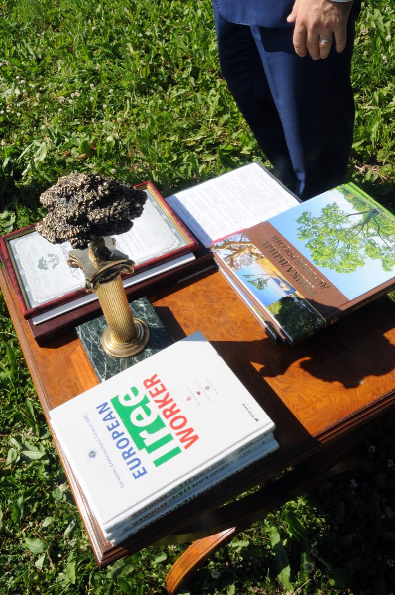 В Вологодской области открыт еще один памятник живой природы всероссийского значения