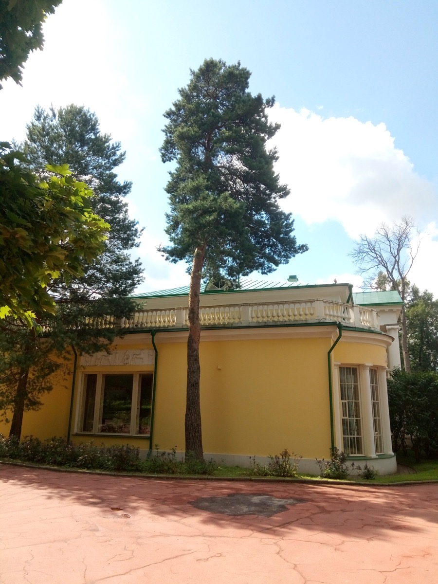 Эксперты Центра древесных экспертиз выехали в Московскую область.