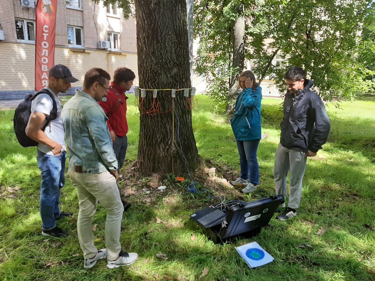 МШУД «ЗДОРОВЫЙ ЛЕС» провела курс «Обследование древесных растений зеленых насаждений городов»