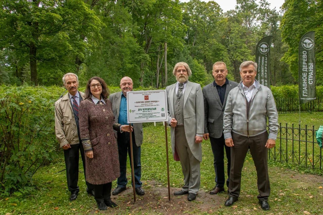 Липецкая область приняла участие в эстафете всероссийской программы «Деревья – памятники живой природы»